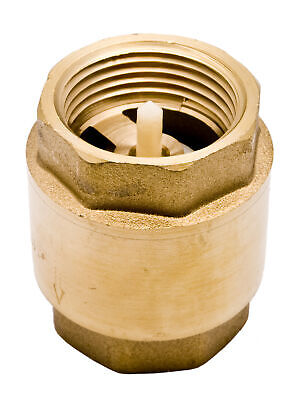 "3/4"" Brass In-Line Spring Check Valve - 200WOG"