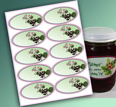 "10 Blank or Custom text 4 x 2"" OVAL Canning LABELS Jam Jelly Syrup CHOOSE STYLES"