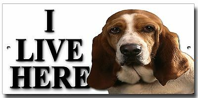 "Basset Hound ""i Live Here"" Metal Sign,premium Quality Sign.dog Warning Sign."