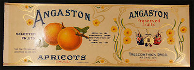 C.1910 LITHO. ANGASTON APRICOTS LABEL TRESCOWTHICK BAROSSA VALLEY STH AUST q15.