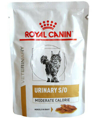 36x85g Royal Canin Urinary S/O Moderate Calorie Häppchen in Soße Frischebeutel