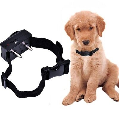 LED Waterproof Rechargeable Shock Vibrant Remote 2 Dog Training Collar