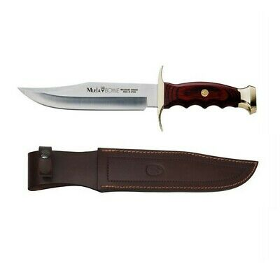 MUELA Bowie 18 Knife Coral Wood Handle Brass Bolster Stainless Blade + Sheath