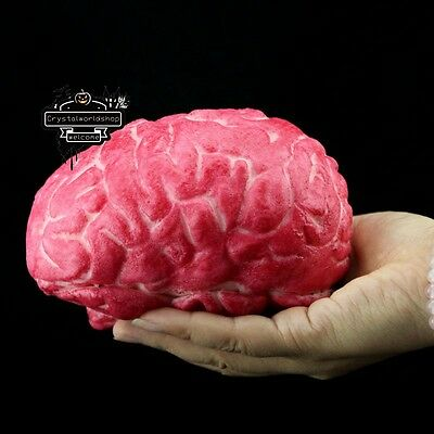 Halloween Horror Props Lifesize Brain Haunted House Scary Decorations Prank Toys