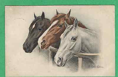 MUNK Vtg PC  Beautiful BAY, WHITE & BLACK HORSES by a FENCE   a/s CASALANZA