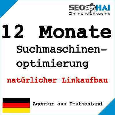 12 Monate Suchmaschinenoptimierung manuell Linkaufbau Backlinks Website SEO