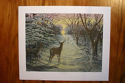 Winter Solstice James Lumbers Artist Signed & Numbered Limited Collector Edition