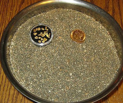 2 LBS. RICHER AMERICAN RIVER PAYDIRT CONCENTRATES FROM AMERICAN GOLD PAYDIRTS