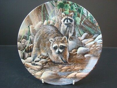 BRADEX THE RACCOON FROM FRIENDS OF THE FOREST COLLECTION