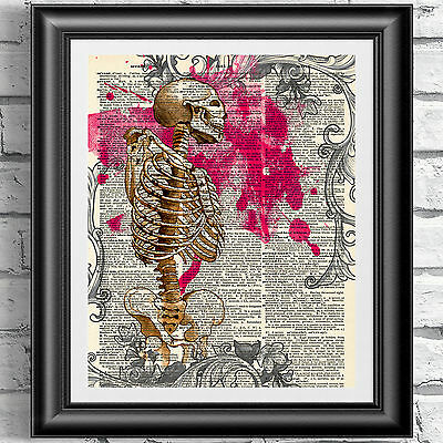 Gothic anatomical skeleton Wall art on antique dictionary book page.