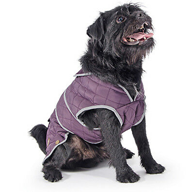 Ancol Muddy Paws Damson Quilted Barker Dog Coat - All Sizes