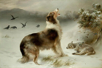 Found or Shepherd's Call Dog Print by Walter Hunt or Albrecht Schenck