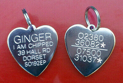 Engraved Pet Tags Heart Silver Cat Dog Puppy Identity ID Collar Tag & Ring