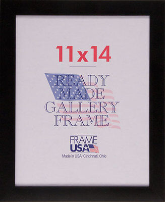 12X16 SIMPLE POSTER Frame w/Plexi-Glass - Available in Black or ...