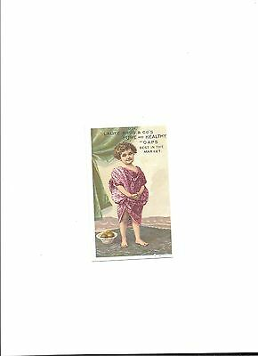 1890's Victorian Trade Card Lautz Bros.&Co's Soap sold by DM HollenbecTurners,NY