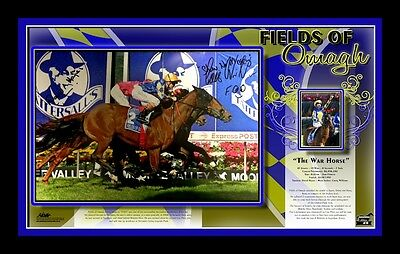Fields Of Omagh Career Tribute – Framed - Signed D Hayes & C Williams - Ltd Edt