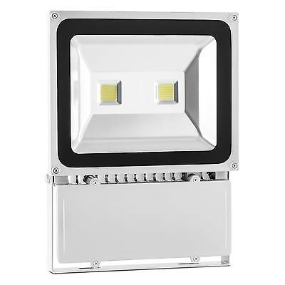 Projecteur Led Blanc Lightcraft Alphalux Ip65 100W Travaux Lumiere Froide Neuf