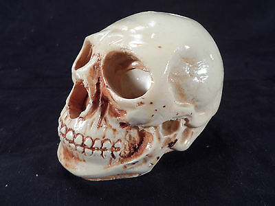 Vintage Ceramic Skull Candle Holder--Nicely Done!--Excellent Condition!