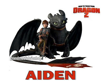 New Personalized Custom How to Train Your Dragon 2 T Shirt Birthday Party Gift