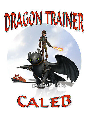 New Personalized Custom How to Train Your Dragon #2 T Shirt Birthday Gift Party