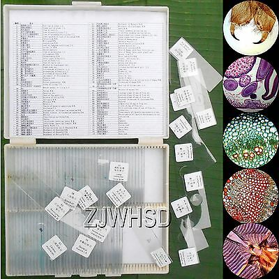 100pcs Glass Prepared Basic Science Microscope Slides Sample Biology Pathology