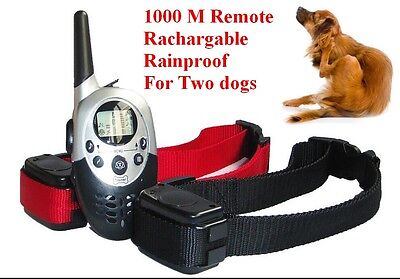 1000M 3 Level Remote Waterproof Rechargeable Shock Dog Pet Training Collar 2 dog
