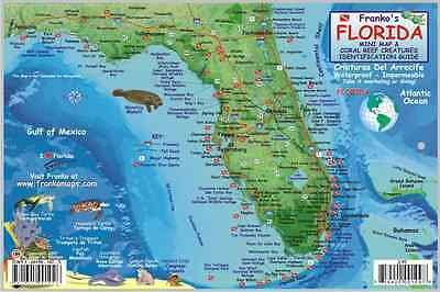 Florida State Dive Map & Reef Creatures Guide Laminated Fish Card by Franko Maps