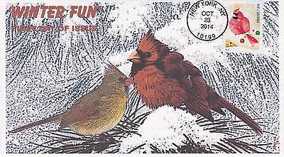 Jvc Cachets -2014 Winter Fun Issue First Day Cover Fdc Seasons Topical Cover #2
