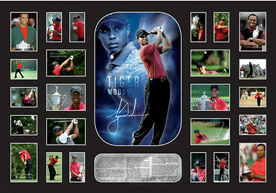 New Tiger Woods Signed Limited Edition Memorabilia Framed