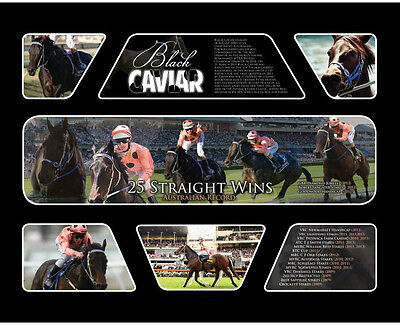 New Black Caviar Limited Edition Memorabilia Framed