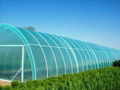 Greenhouse Clear Plastic Film Foil Polyethylene Covering   VARIOUS SIZES