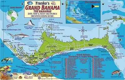 Grand Bahama Island Dive Map & Reef Creatures Laminated Fish Card Franko Maps