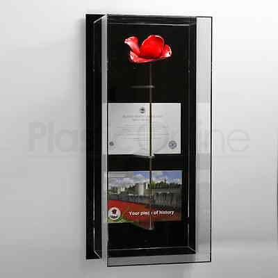 London Tower Poppy Display Case Model S Wall Mounted