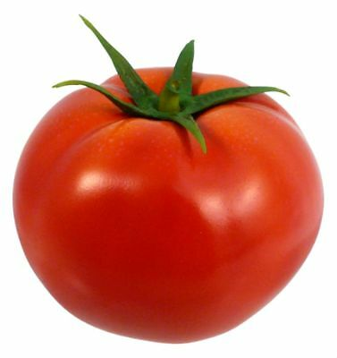 Tomato Homestead Seeds by Zellajake Many Sizes Heirloom Bulk Old Fashioned #220