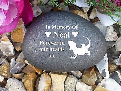 Pet Memorial Pebble (Stone effect) Personalised - Weatherproof - Bearded Dragon