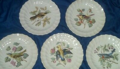 Set of Five (5) Copeland Spode AMERICAN BIRDS Luncheon Plates Waxwing Bunting