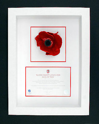 London Poppy Display Frame For Tower of London Ceramic Poppy in a White Wood