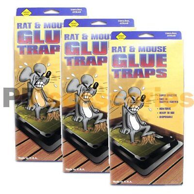 Pack of 12 Disposable Glue Trap for Mice Rats Mouse Super Stick Tray Made in USA