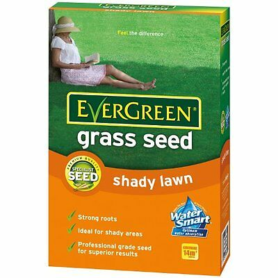 Scotts Evergreen Shady Lawn Grass Seed