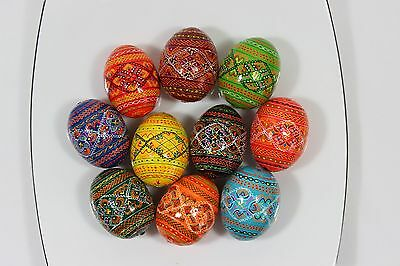 Ukrainian 10 Wooden Painted Easter Eggs Pysanka Pysanky Large Chicken Size