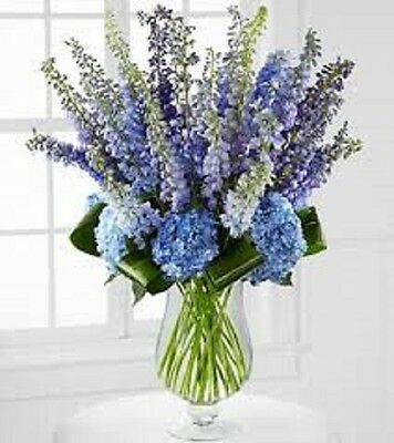 Rocket Larkspur Delphinium Blossoms shades of blue to pink Perennial fragrant
