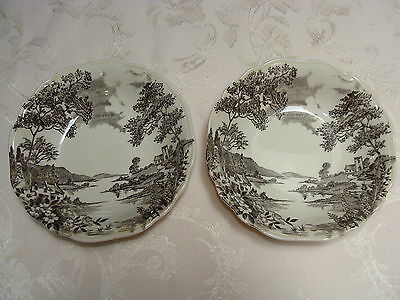 J & G MEAKIN ENGLISH STAFFORDSHIRE OLDE AVON DALE ENGLAND SOL FRUIT BOWLS (2)