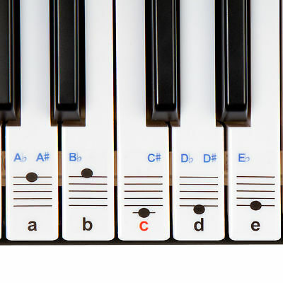 New Keysies Transparent Plastic Piano & Keyboard Note Stickers & Placement Guide