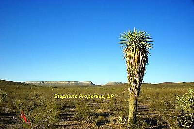 10 ACRES--GORGEOUS EAGLE FLATS AREA NEAR SIERRA BLANCA IN W. TEXAS--$95/MO TERMS