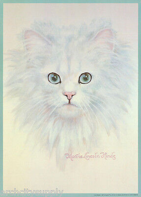 POSTER:ART DRAWING: PERSIAN CAT by MARCIA L. HINDS - FREE SHIP  #14-742  RP80 L