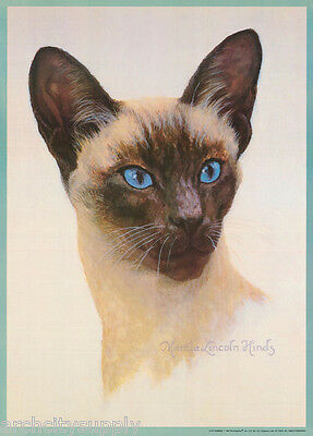 POSTER:ART DRAWING:  SIAMESE CAT by MARCIA L. HINDS - FREE SHIP  #14-741  RP81 L