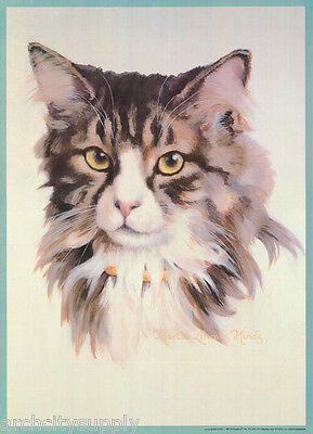 POSTER:ART DRAWING: MAINE COON CAT by MARCIA L. HINDS - FREE SHIP#14-743  RP80 P