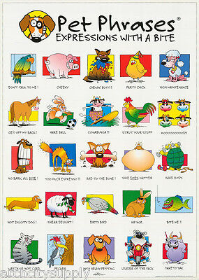 STUDENT CROSSING FREE SHIP  #FPO353  RAP128 B POSTER:SIGN:COMICAL