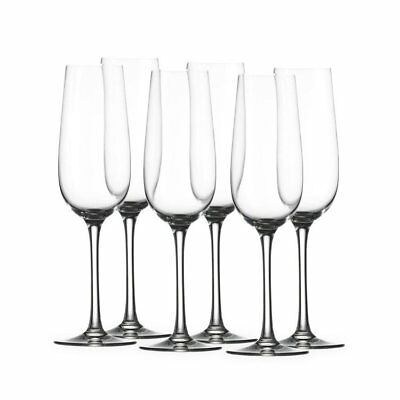 NEW Stolzle Weinland Champagne Flute 200mL Set of 6 (RRP $56)