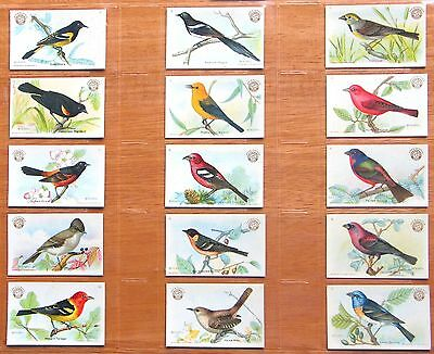 1922 Arm and Hammer J7 - Useful Birds of America, 3rd Series Set (Small) - NrMt